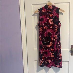 NWT Julie Brown Sleeveless Dress